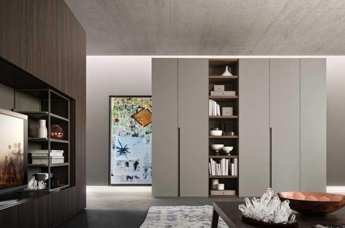 Шкаф в гостиную: 180 фото современного и стильного элемента мебельного интерьера